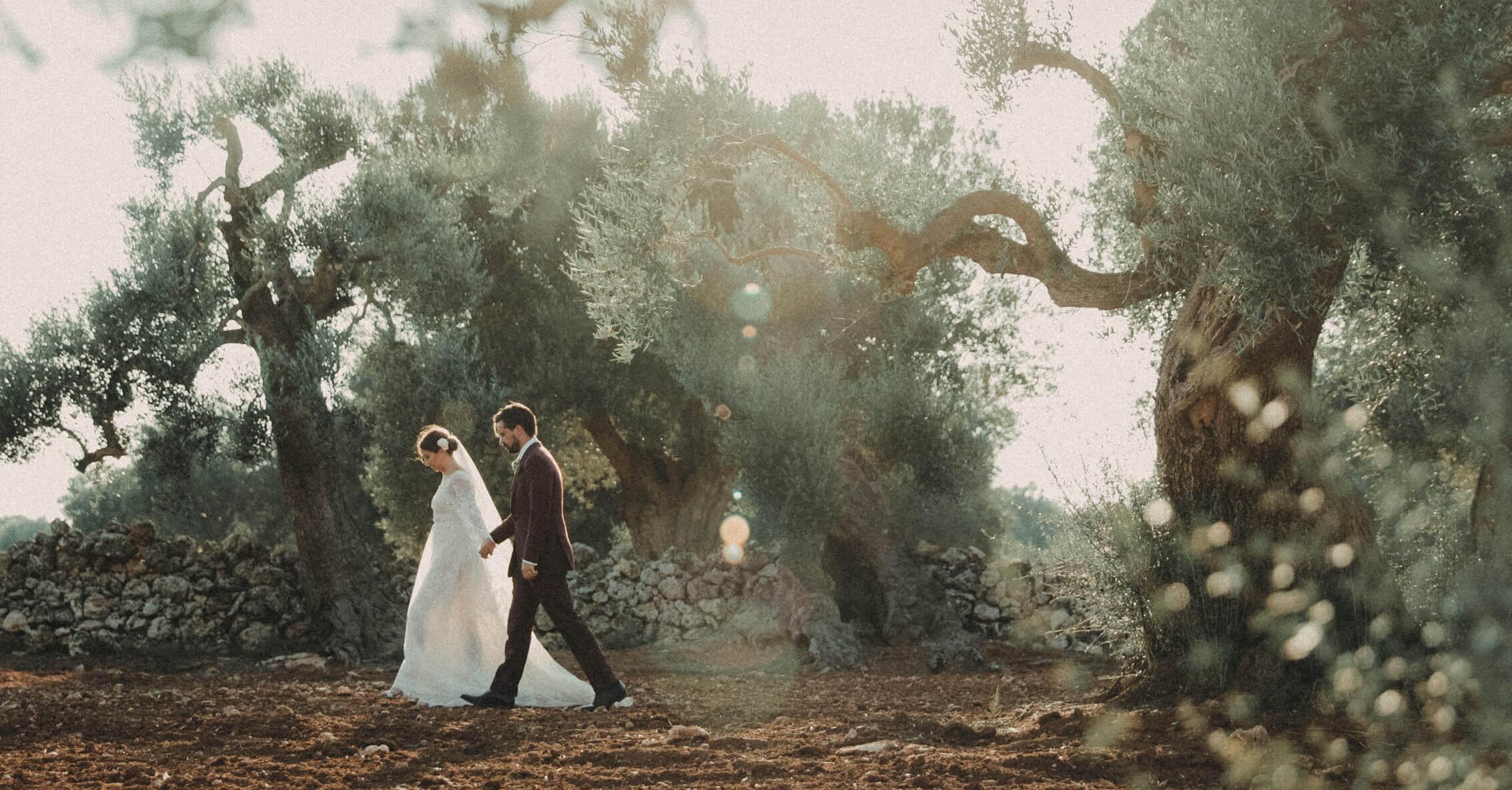 Bride Groom Portrait in Puglia, Italy walking through Olive Grove, Masseria Potenti Wedding